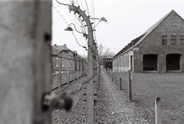 Vnější dvojitý plot z ostnatého drátu v Osvětimi