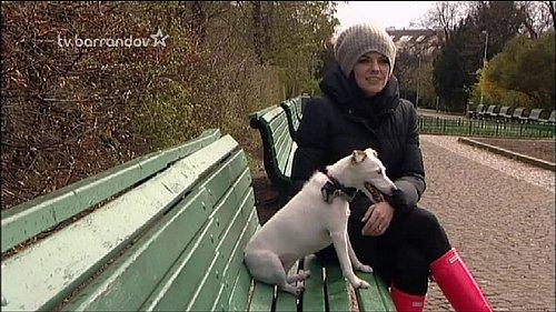 Nová podoba loga TV Barrandov ve vysílání.
