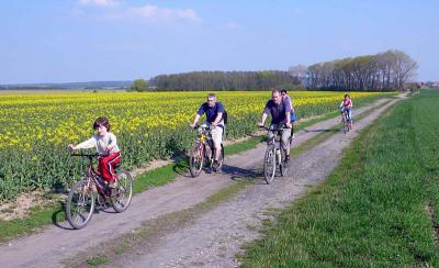 Sport-relax-Outdoor (sport)-cyklistika-1