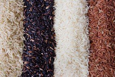 Různé druhy rýže