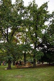 Pracovna v parku