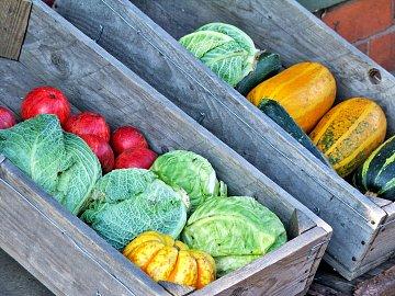 Díky bedýnkám poznáte i druhy zeleniny, o nichž jste ještě nikdy neslyšeli.