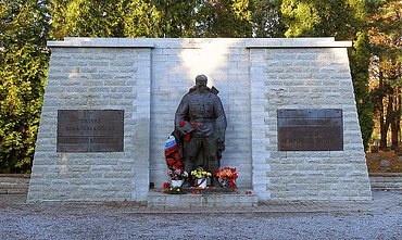 Bronzová socha rudoarmějce, jejíž přesun na vojenský hřbitov byl záminkou pro kybernetické útoky na estonské servery.