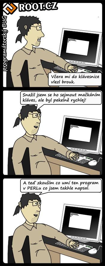 Programátorský bug
