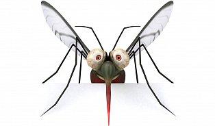 Vitalia.cz: Zaručená přírodní ochrana proti komárům