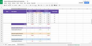 Tabulkový procesor Sheet je zřejmě nejpokročilejší součástí Google Docs. Výčet funkcí už je opravdu rozsáhlý.