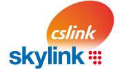 DigiZone.cz: Skylink dostal flastr za deset milionů