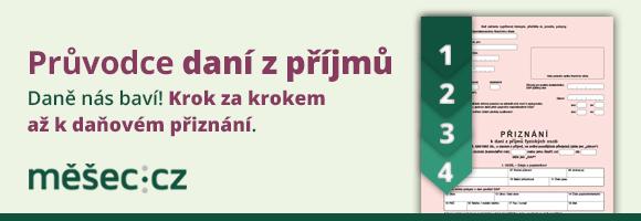 dan_z_prijmu_pruv