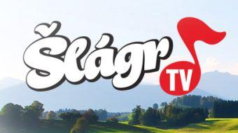 DigiZone.cz: Špatný rok pro majitele Šlágr TV: prodělal miliony