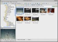 FastStone Image Viewer - okno programu