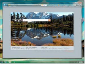MS Internet Explorer 9 Final - náhled