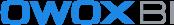 logo OWOX