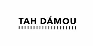 ČT - logo Tah dámou