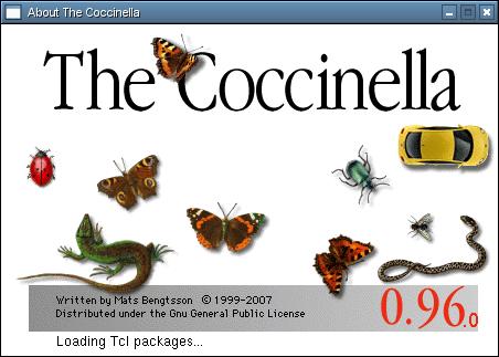 Coccinella 1