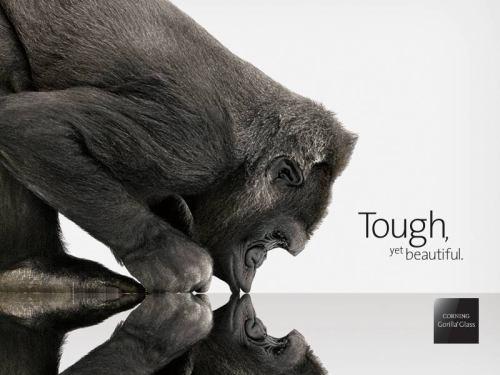 Sony - Corning GorillaGlass