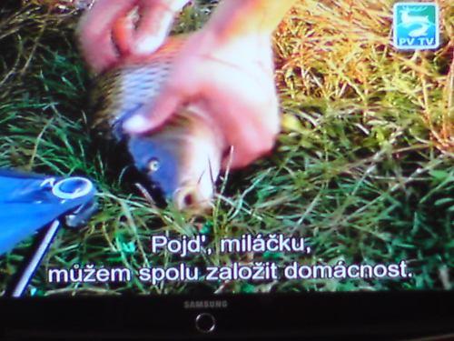 PV TV - DVB titulky