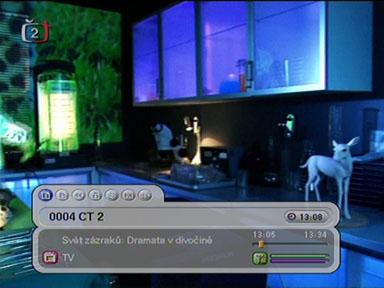 Homecast T3000 info