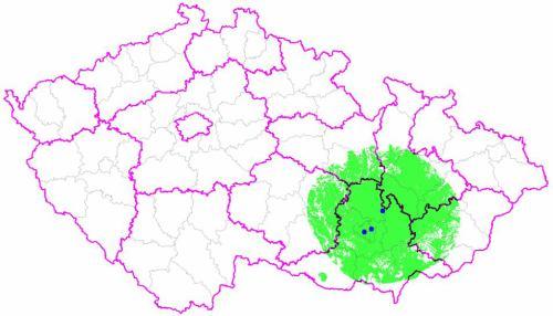 Multiplex 3 - region jižní Morava