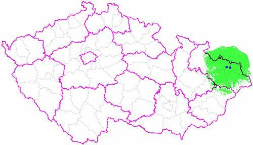 Multiplex 3 - region severní Morava