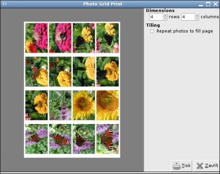 Photo Grid Print