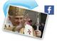 Vatikán a papež