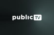 Public TV 2