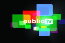 Public TV 4