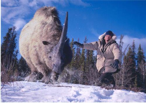 TV Barrandov - prehistorický park