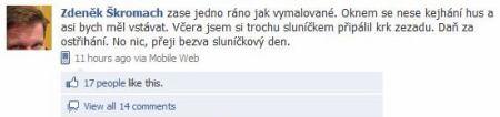 Facebook - Škromach-2