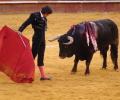 Víkendový výlet do Valencie, města mnoha chutí