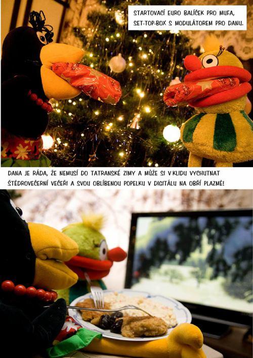Vrána Dana - Vánoce