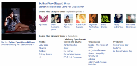 facebok-profil-sample.png