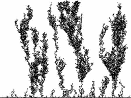 fractals43_2