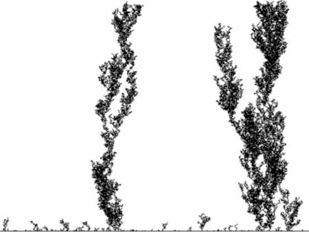 fractals43_4