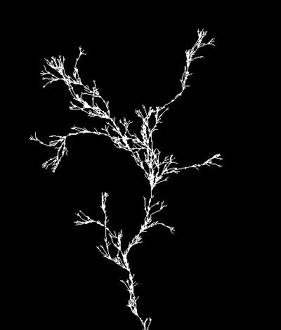 fractals55_8