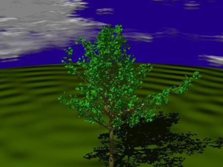 fractals60_7