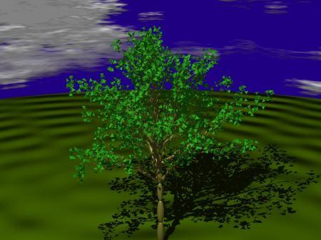 fractals60_a
