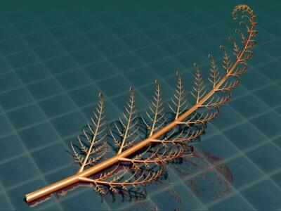 fractals79_d.jpg