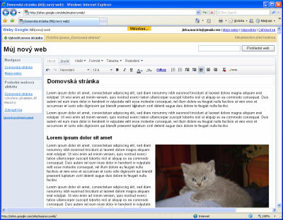 Google Sites - editor