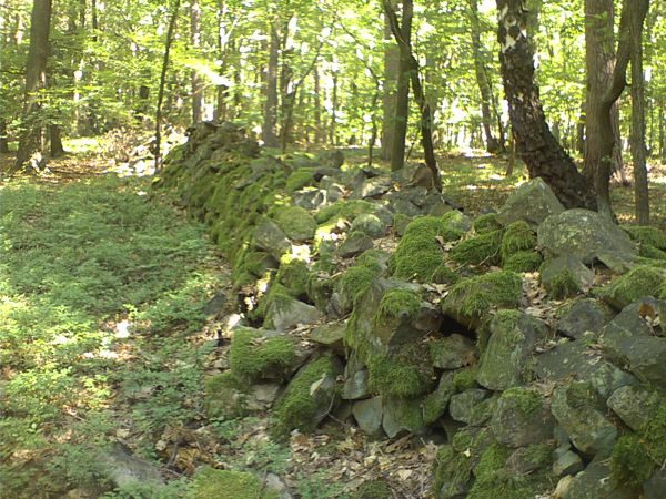 Kamená zeď v Brdech
