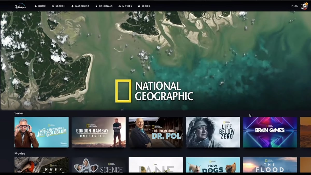National Geographic v Disney+