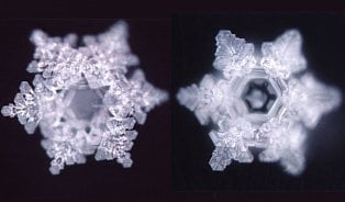 Voda plná lásky? Očem (ne)vypovídají vodní krystaly MasaruEmota