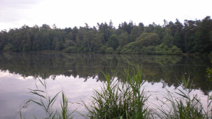 Rybník Biřička