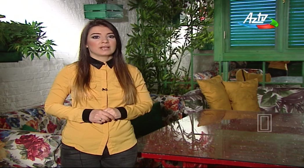 AzTV, Xazer TV, Ictimai TV a Azad TV