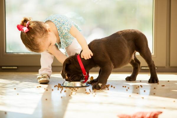 Může člověk jíst žrádlo pro psy? Děti se obvykle neptají...