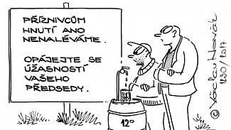 Podnikatel.cz: Podnikatelka příznivcům ANO nenalévá