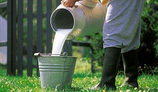 Pro mlékárnu jsou antibiotika vmléce velký problém