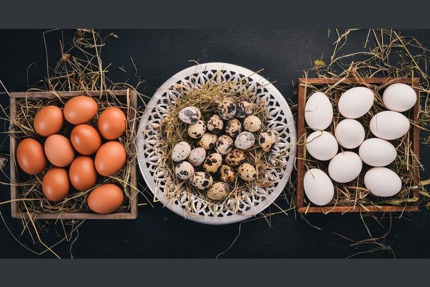 Křepelčí vejce
