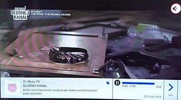 Skylink - Rebel 2 zaujal pozici Mňau TV...