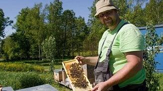 Vitalia.cz: Útočí včely na vousáče?